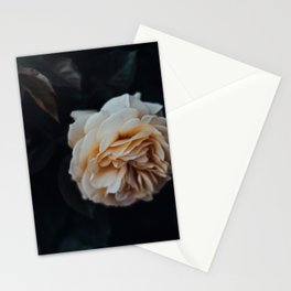 """""""Peach"""" - Rose Collection Stationery Cards"""