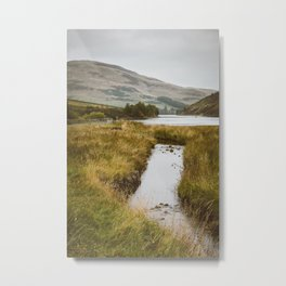 Autumn in Pentlands Metal Print
