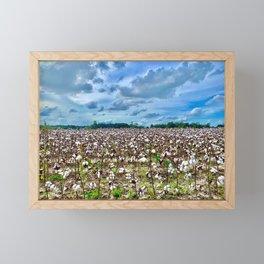 cotton fields and blue skies Framed Mini Art Print