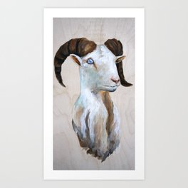 Corsican Ram Art Print
