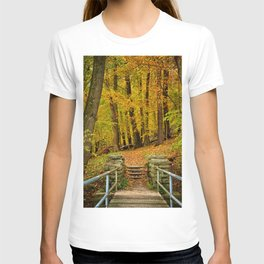 Hike In Autumn Woods T-shirt