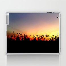 Sunset Reeds Laptop & iPad Skin