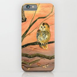 Colorful Owl Art iPhone Case