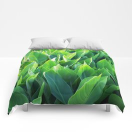 Green leaves so beautiful. Comforters