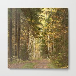 Wanderlust In The Forest #decor #society6 #buyart Metal Print