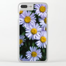 Plant Patterns - 𝘌𝘳𝘪𝘨𝘦𝘳𝘰𝘯 sp. Clear iPhone Case