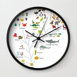Evolution in biology, scheme evolution of animals on white. children's education back to scool Wall Clock