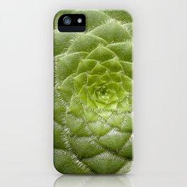 Aeonium Tabuliforme iPhone Case