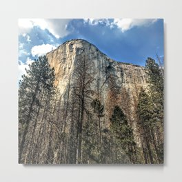 I LOOK UP TO YOU Metal Print