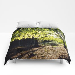 The Woods in Spring Comforters