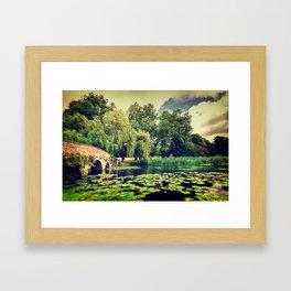 Zen Meditation Lily Pond Framed Art Print
