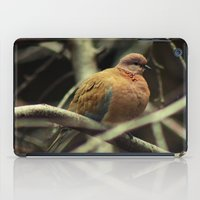 pigeon iPad Cases featuring Pigeon by Zura