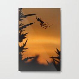 Sunset Spider Metal Print