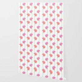 Carnations Wallpaper