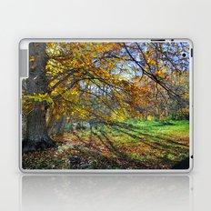 multicolored autumn Laptop & iPad Skin