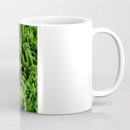 The Lost Baseball Coffee Mug