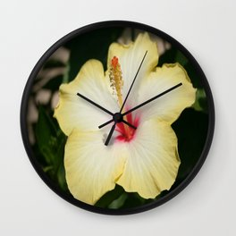 Yellow Hibiscus With Garden Background  Wall Clock