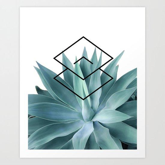 Agave geometrics IV by galeswitzer