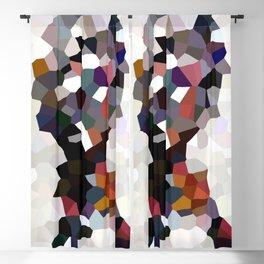 Geometric Anatomy Blackout Curtain