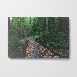 Forest Trail XLIV Metal Print