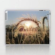 Wheat Sunrise Laptop & iPad Skin