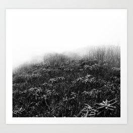 rhododendron forest Art Print