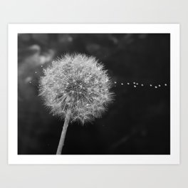 flower macro drop Art Print