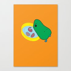 beans2 Canvas Print
