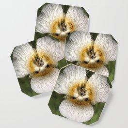 Mariposa Lily 3 Coaster