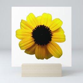 Rudbeckia Blossom Mini Art Print