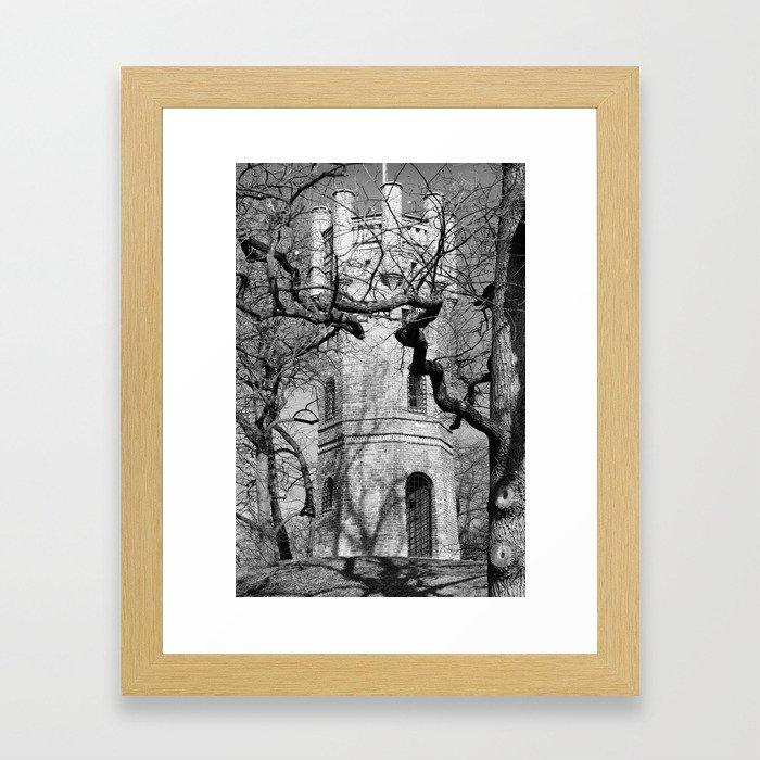 the tower of Goldilocks Framed Art Print