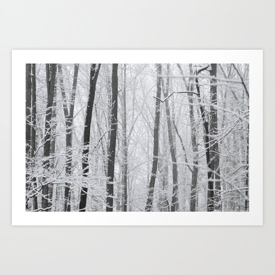 Winter Wood Art Print