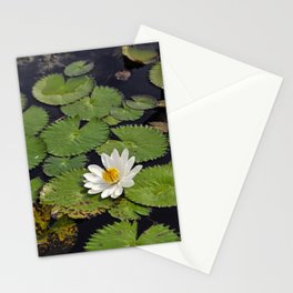 Water Lily, VII Stationery Cards