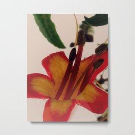 Painted Flower Metal Print