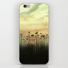 Into the sunset iPhone & iPod Skin