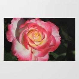 Multi-Hued Rose Rug