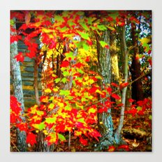Fall Beauty Canvas Print