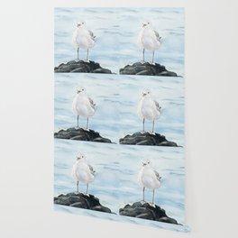Seagull 2 Wallpaper