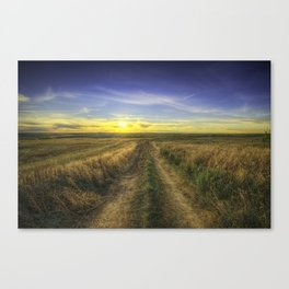 Autumn Sunset on Farmers Field Canvas Print