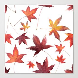 Dead Leaves over White Canvas Print