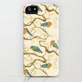 Robin in the Corkscrew iPhone Case