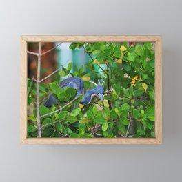 A Fresh Look Framed Mini Art Print