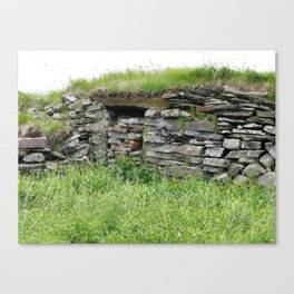 Root Cellar Canvas Print