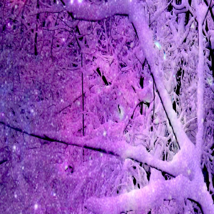 Cosmic River Galaxy Forest Leggings