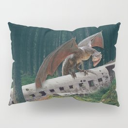 Dragon Plane Crash-Sólheimasandur Plane Crash Pillow Sham