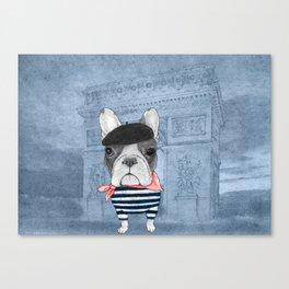 French Bulldog. (panoramic view version) Canvas Print