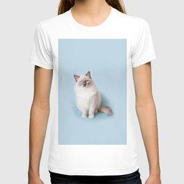 Blue eyed Ragdoll kitty sitting T-shirt