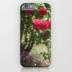 A secret garden iPhone 6s Slim Case