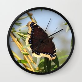 Mourning Cloak Butterfly Sunning Wall Clock