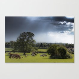 Home land Canvas Print
